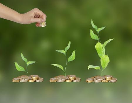 offset up: Progress of green business