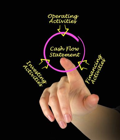 solvency: Cash Flow Statement