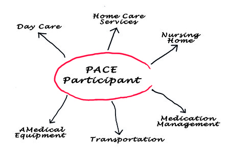 Diagram of PACE photo
