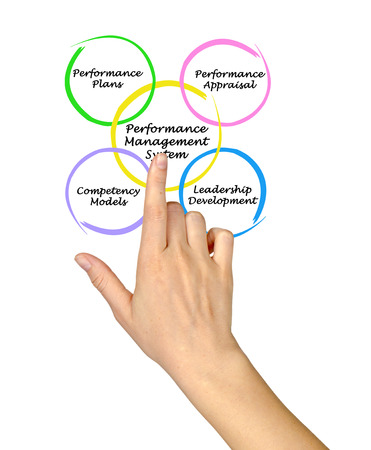 performance appraisal: Performance Management System