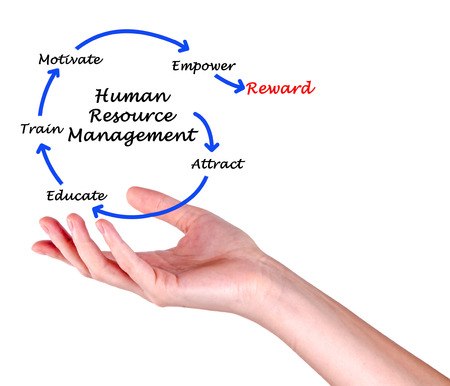 human palm: human resource management