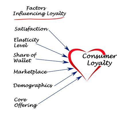 elasticidad: Factores que influyen en la lealtad