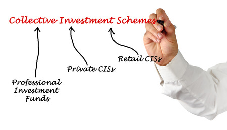 schemes: Collective Investment Schemes