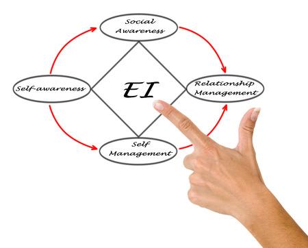 social emotional: Diagram of emotional intelligence