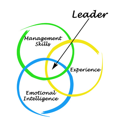 ei: leader qualities