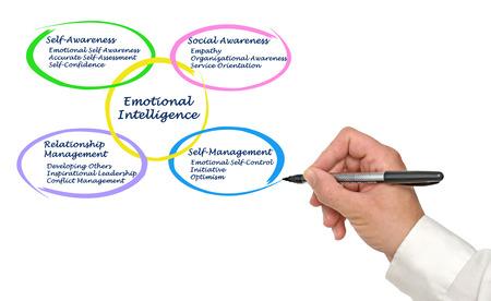 emotional intelligence: Emotional Intelligence