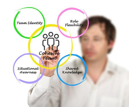 cohesive: Cohesive team