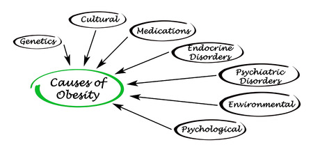 causes: Causes of Obesity