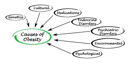 oorzaken: Oorzaken van obesitas