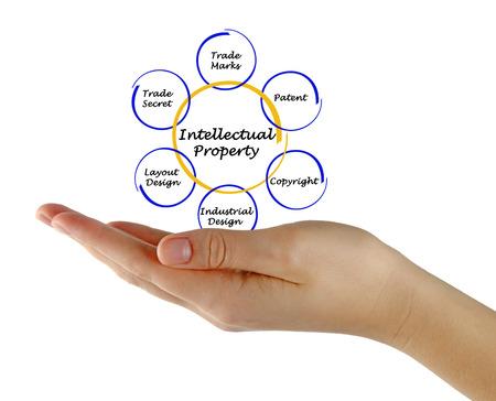 Intellectual Property photo