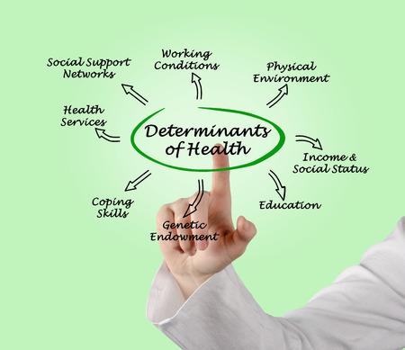 coping: Determinants of Health