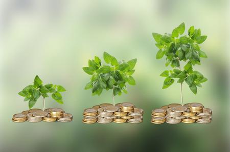 ecosavy: Progress of green business