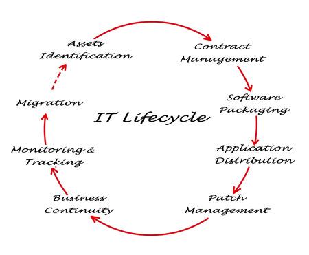 ciclo de vida: Gesti�n del Ciclo de Vida Foto de archivo