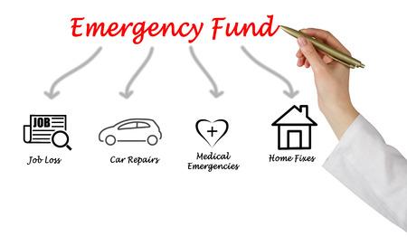 emergency care: Emergency Fund