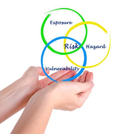 hedging: Diagram of risk