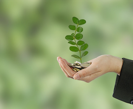 Investieren zu Green Business Standard-Bild