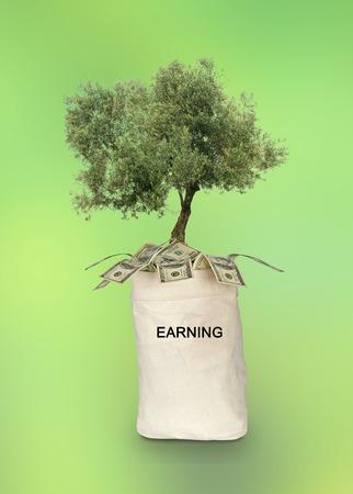 earning: Bag with earning