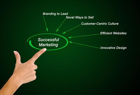 centric: Diagram of successful marketing
