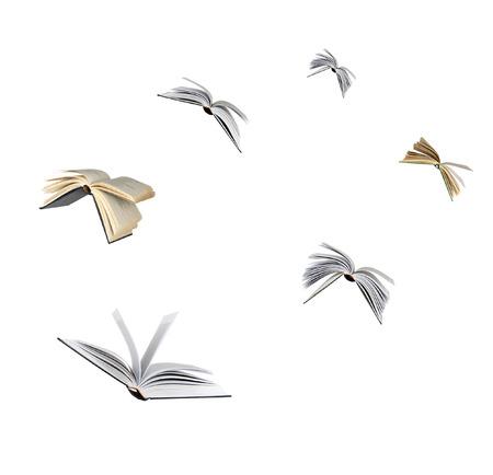 Los libros de vuelo