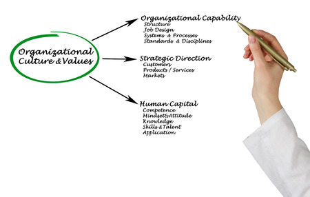 Diagram of Organizational Culture&Values