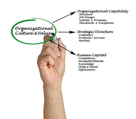 disciplines: Organizational Culture & Values Stockfoto