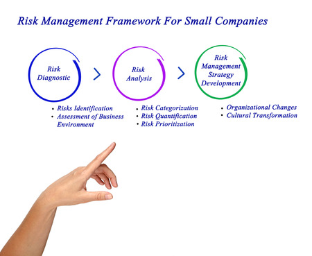 Risk Management Framework For Small Companies