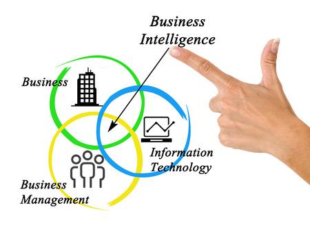 ビジネス インテリジェンス