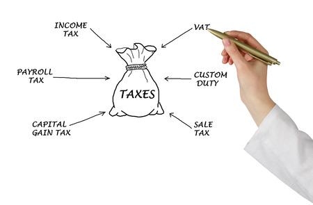 payroll: Diagram of taxes Stock Photo