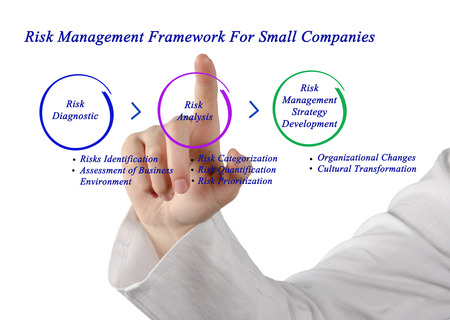 categorization: Risk Management Framework For Small Companies