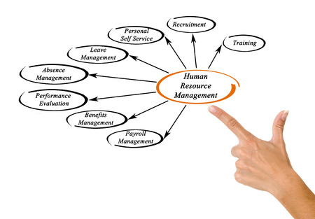 absence: Human Resource Management