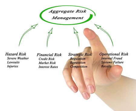 lawsuits: Aggregate Risk Management