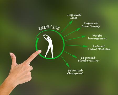 ejercicio: Utilidad del ejercicio