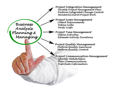 managing: Business Analysis Planning and Managing