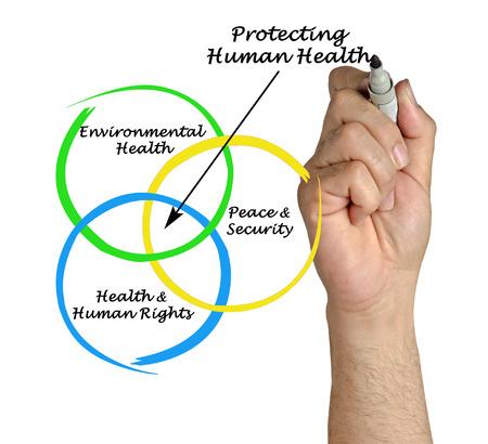 human health: Diagrama de la protecci�n de la salud humana