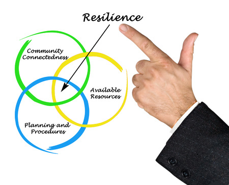 connectedness: Diagram of Resilience