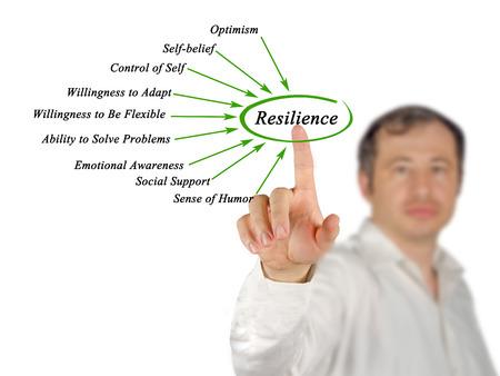 Diagram van Resilience Stockfoto