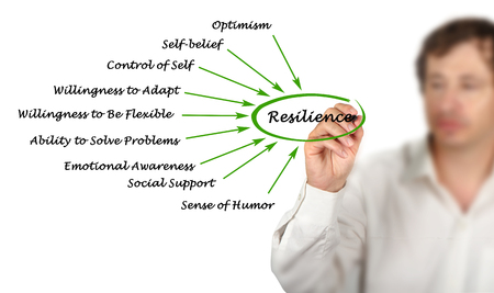 willingness: Diagram of Resilience