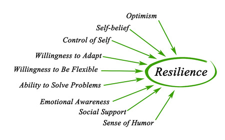Diagram van Resilience
