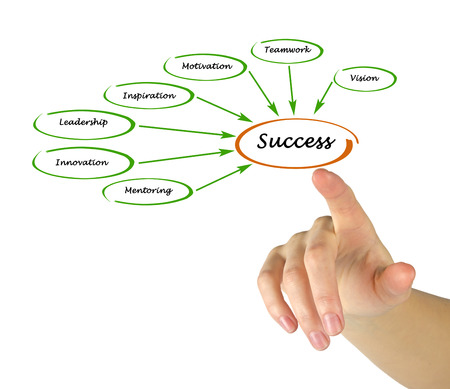 innovator: Diagram of success