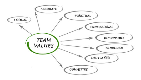 commitment committed: team values and norms
