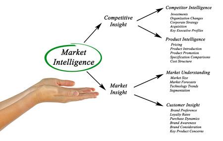 inteligencia: Inteligencia De Mercado