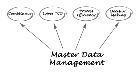 master: Master Data Management