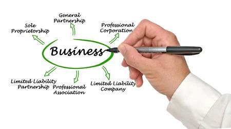 stockholder: Types of business