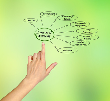 domains: Domains of Wellbeing