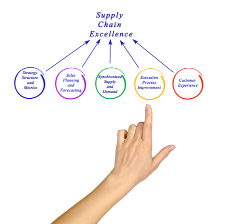 point of demand: Supply Chain Excellence