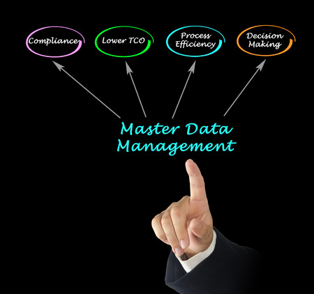 data management: Master Data Management