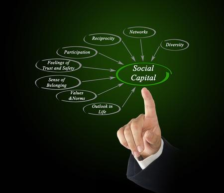 bridging: Social Capital