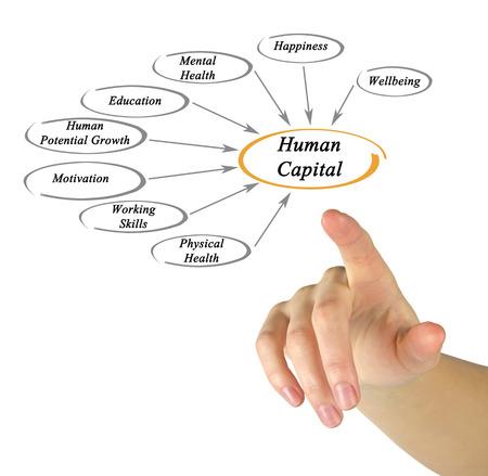capital humano: Diagrama del Capital Humano