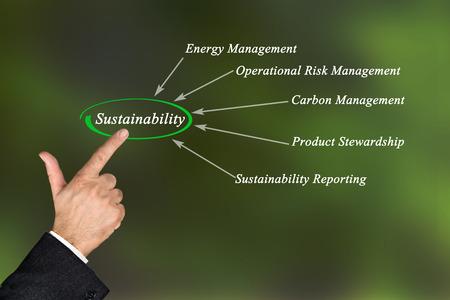 Diagram of sustainability Stockfoto