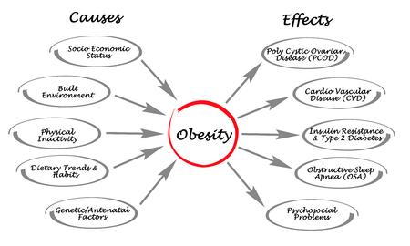 obeso: Obesidad: causas y efectos